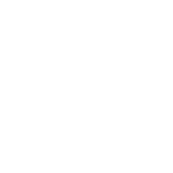 StaySafe Logo White